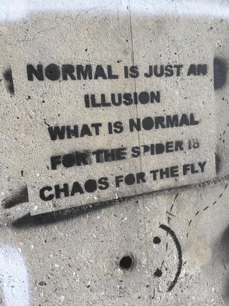 La normalité est juste une illusion. Ce qui est normal pour l'araignée est chaos pour la mouche